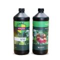 Kit Vaccin V10