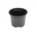 Pot Noir - 12 x 8,9 - 5°