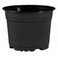 Pot 10,5 x 7,9 cm - 5° - Noir - Carton
